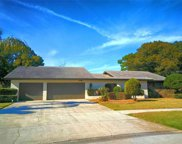 2862 Shady Oak Court, Clearwater image