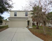 3544 Cardinal Feather Drive, Land O Lakes image