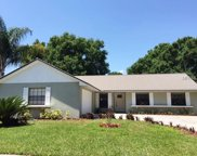 15702 Crying Wind Drive, Tampa image