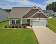 199 Palmetto Green Dr., Longs image