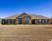 13196 Summerfield Drive, Athens image