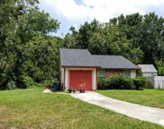 1028 MIMOSA COVE CT East, Jacksonville image