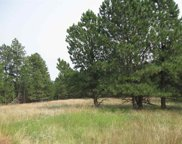 116 Trails End, Custer image