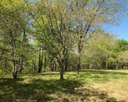 7950 Fisher Rd Lot #3, Primm Springs image