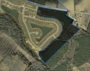 65 lots Blue Rock Dr., Longs image