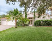 11007 Ledgement Lane, Windermere image
