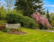 1331 Bellefield Park Lane Unit 1331, Bellevue image