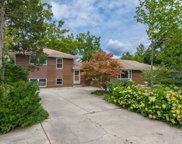 13 Willow Terrace, Lake Zurich image