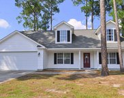 4337 Summit Trail, Myrtle Beach image