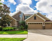10519 Mistflower Lane, Tampa image