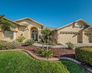 1725 Winding Willow Drive, Trinity image