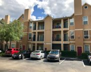 1995 Erving Circle Unit 301, Ocoee image