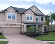 13301 Sunset Shore Circle, Riverview image