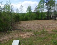lot 64 Blue Heron Bluff, Harriman image