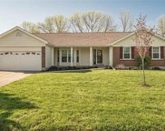 4225 Golden Wheat  Court, St Charles image