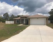2033 Lily Place, Poinciana image