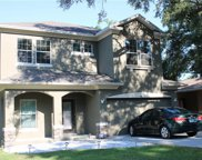 981 Harbor Hill Drive, Safety Harbor image