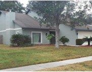 14906 Palmcrest Place, Tampa image