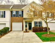 707  Torrey Pines Lane, Fort Mill image