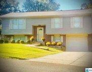 208 Oak Dr, Trussville image