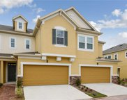 17443 Chateau Pine Way, Clermont image