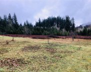4868 Rose Valley Rd, Kelso image
