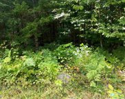 Maillet Road, Lunenburg image