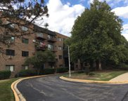 235 North Mill Road Unit 415B, Addison image