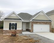 971 Carnation Drive, Spring Hill image
