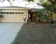 2314 Grove Valley Avenue, Palm Harbor image