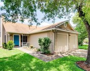 11716 Tallow Field Way, Austin image