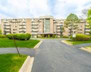 1243 East Baldwin Lane Unit 114, Palatine image