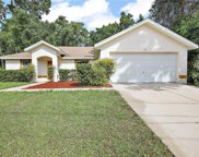 13 Juniper Trail, Ocala image