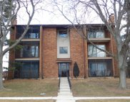 9910 Shady Lane Unit 2SW, Orland Park image