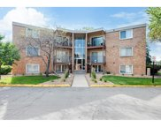 9147 Highway 55 Unit #304, Golden Valley image