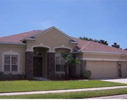 2339 Tarragon Lane, New Port Richey image