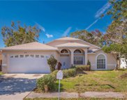 1818 Winwood Drive, Clearwater image