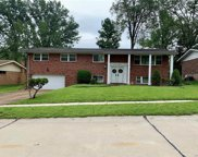 4734 Sunnyview  Drive, St Louis image