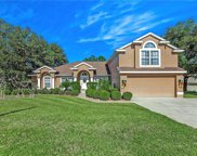 8711 Spyglass Loop, Clermont image