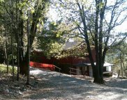 25425  Pineview Drive, Colfax image