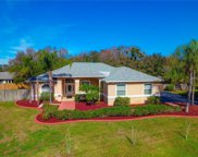 11902 Shadow Run Boulevard, Riverview image