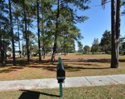 1357 Grandiflora Drive, Leland image
