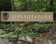 Lot # 8 Yonahlosse, Boone image