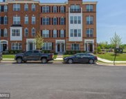 23548 BELVOIR WOODS TERRACE, Ashburn image