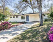 336 AURIGA DR, Orange Park image