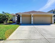 12847 Tar Flower Drive, Tampa image