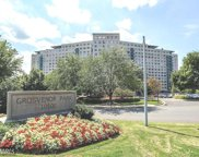 10500 ROCKVILLE PIKE Unit #1016, Rockville image