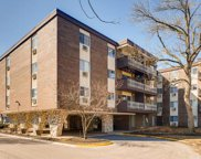 1331 South Finley Road Unit 209, Lombard image