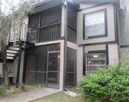 4013 Dream Oak Place Unit 103, Tampa image