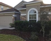 18416 Cypress Bay Parkway, Land O Lakes image
